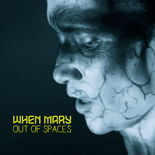 WhenMary smooth single cover 500